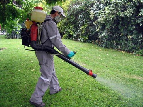 Fumigación en jardin